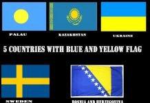 drapeau-jaune-bleu