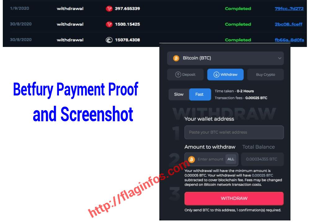 betfury-payment-proof-screenshot
